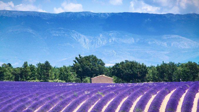 Vacances en Provence